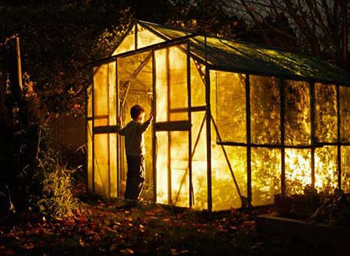 Создайте хорошее освещение в своей теплице