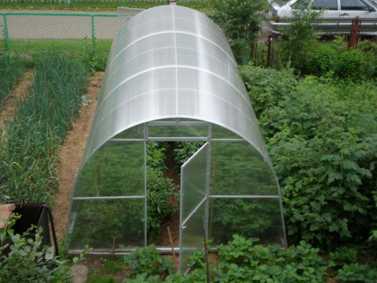 теплица из поликарбоната выращивание зимой