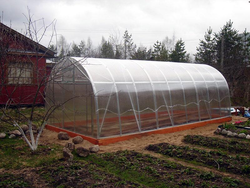 Важно полностью освободить теплицу от растений