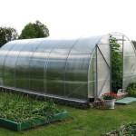 Выбираем качественный поликарбонат для постройки теплицы