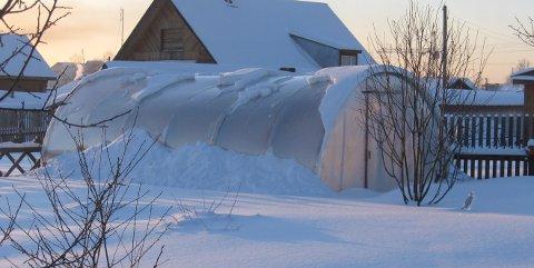 Свойства поликарбоната для теплицы зимой