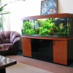 Поликарбонатные аквариумы своими руками