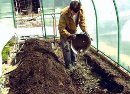 Удобрение почвы в теплице из поликарбоната