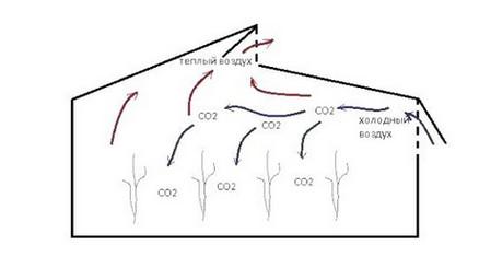 Пример распределения воздушных потоков в теплице