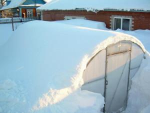 Счищаем снег с теплицы