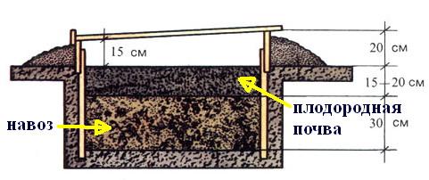 Утепляем грунт при помощи биологического материала