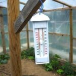 Боремся с жарой в теплице