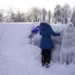 Беседка из поликарбоната зимой