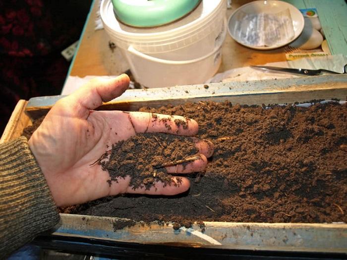 Почва для помидор