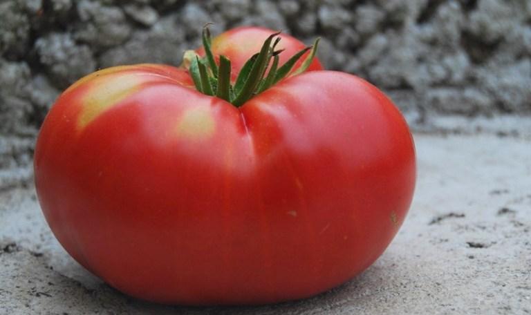Большой спелый помидор