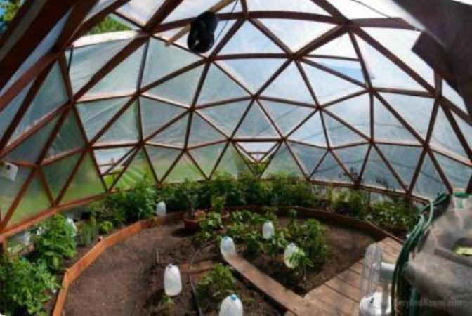 Внутри купольной теплицы